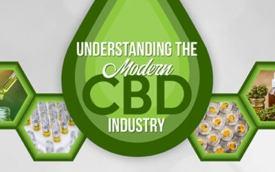 Understanding The Modern CBD Industry