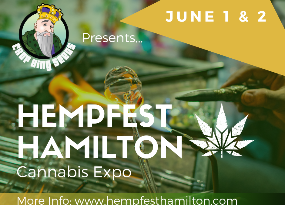 HempFest Hamilton Cannabis Expo – June 1st & 2nd 2019